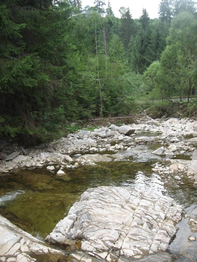 Valea Călăţii, lîngă Căţeaua Leşinată